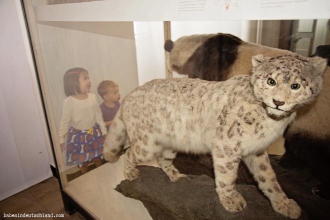 Babes in Deutschland, Natural History Museum in Frankfurt, Germany
